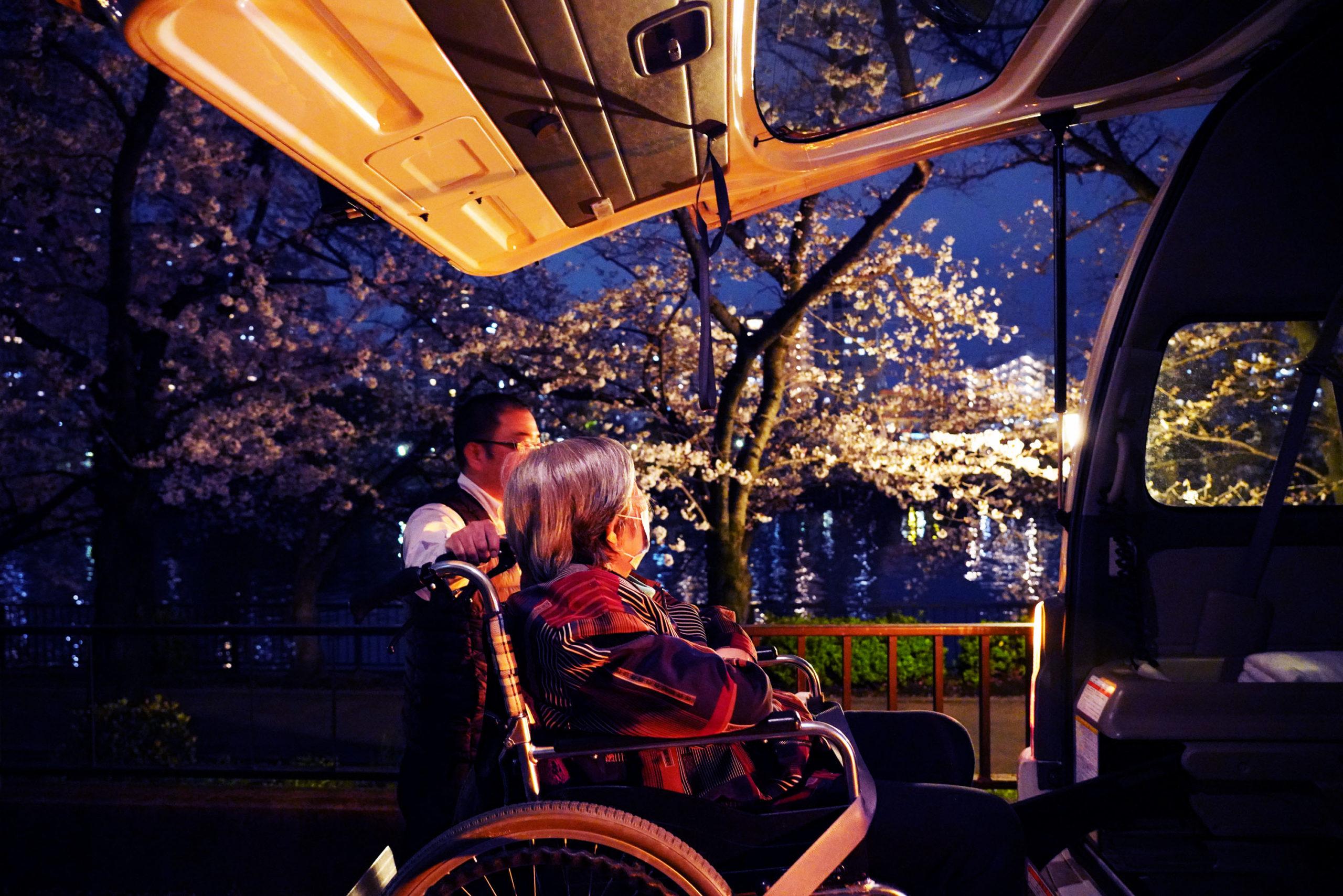 車中からの夜桜ツアー